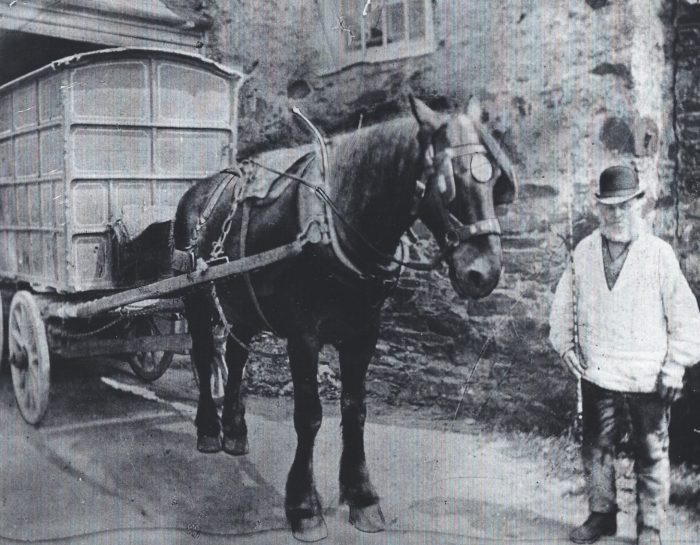 'Grandpa' Kingsland with his horse